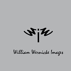 William Wernicke - Artist
