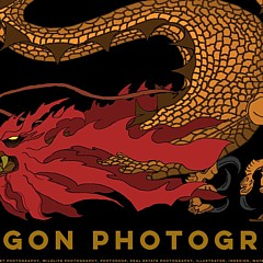 Dragon Photography - Artist
