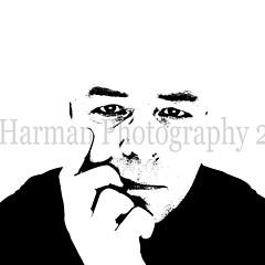 Alan Harman - Artist