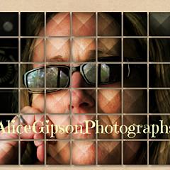 Alice Gipson - Artist