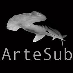 Artesub  - Artist
