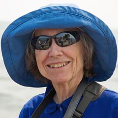 Ann Horn - Artist