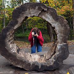 Ann Keisling - Artist
