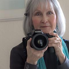 Barbara Hayton - Artist