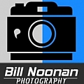Bill Noonan - Artist