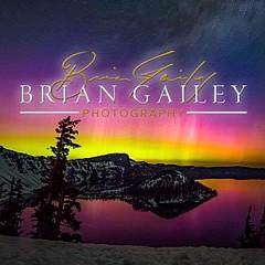 Brian Gailey - Artist