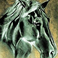Callan Art - Artist