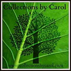 Carol Toepke - Artist