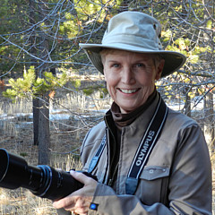 Carolyn Waissman