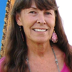 Cheryl Fecht - Artist