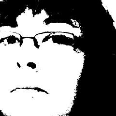 Cindy Johnston - Artist