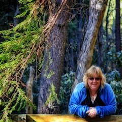 Darlene Bell - Artist