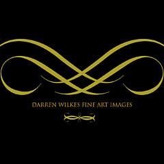 Darren Wilkes - Artist