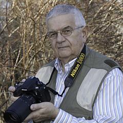 David Waldrop - Artist