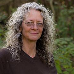Debra Lindberg - Artist