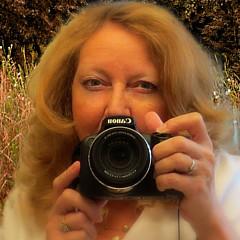 Denise Winship - Artist