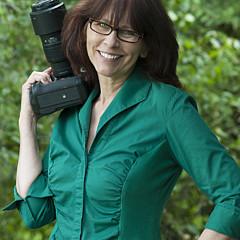 Diane C Nicholson - Artist