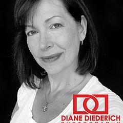 Diane Diederich - Artist