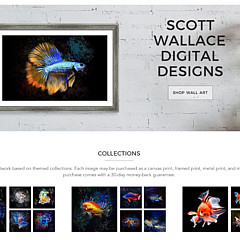 Scott Wallace Digital Designs - Artist
