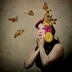 Diane Miller - Artist