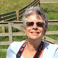 Elaine Teague - Artist