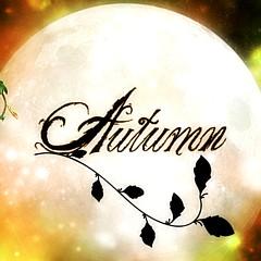 Autumn Moon - Artist