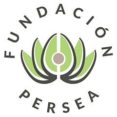 Fundacion Persea - Artist