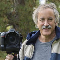 Gary Lengyel - Artist