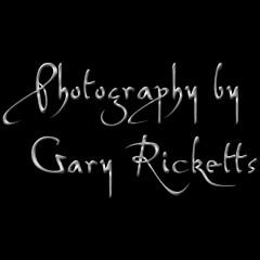 Gary Ricketts - Artist