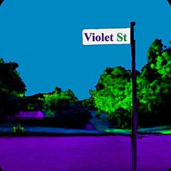 Violet St Art - Artist