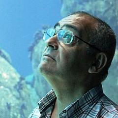 Gracio Freitas
