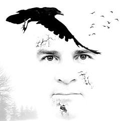 Greg Waters - Artist