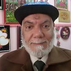 Hassan Ragheb - Artist