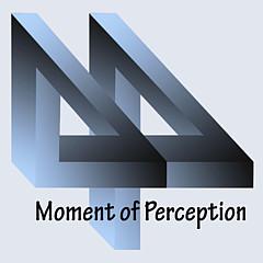 Moment Of Perception  - Artist