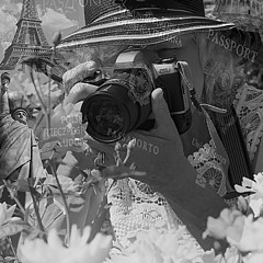 Ivete Basso Photography - Artist