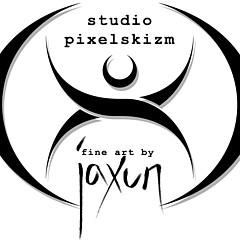 Studio Pixelskizm - Artist