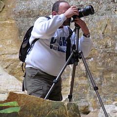 Jeff Schlesinger