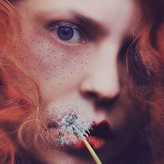 Jennifer Orhelys - Artist