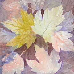 Karen Sturgill - Artist