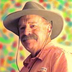 Larry Linley - Artist