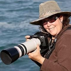 Leslie Reagan -  Joy To The Wild Photos