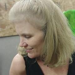 Lisa Pelgrim - Artist