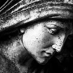 Alpha Omega Photography - Artist