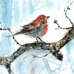 Lynn Cheng-Varga - Artist