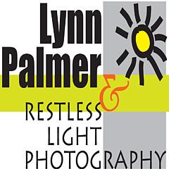 Lynn Palmer - Artist