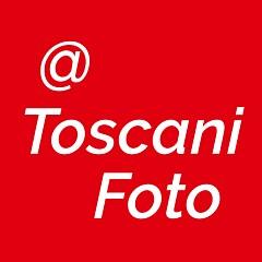 Marco Toscani - Artist