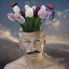 Marius Els - Artist