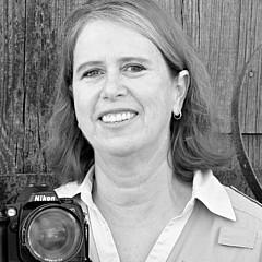 Marsha Williamson Mohr
