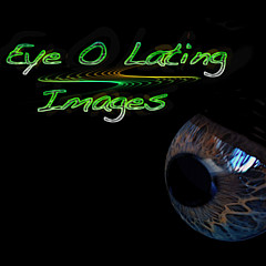 Eye Olating Images - Artist