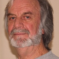 Meyer Van Rensburg - Artist